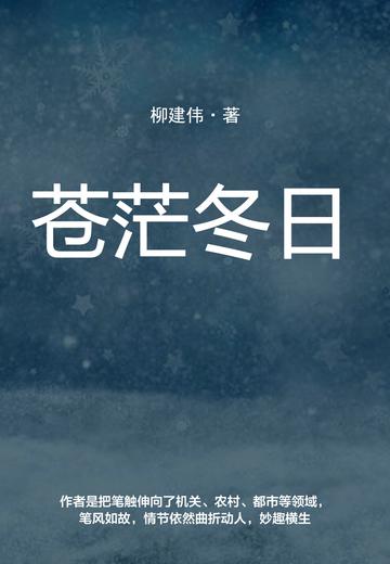 苍茫冬日小说