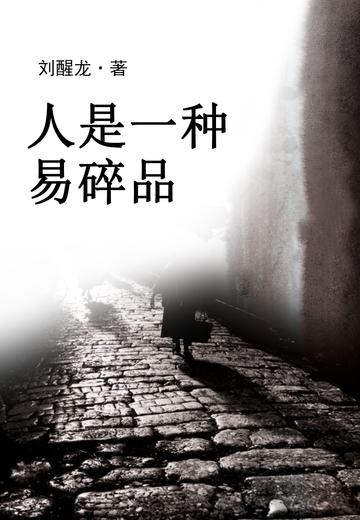 人是一种易碎品小说