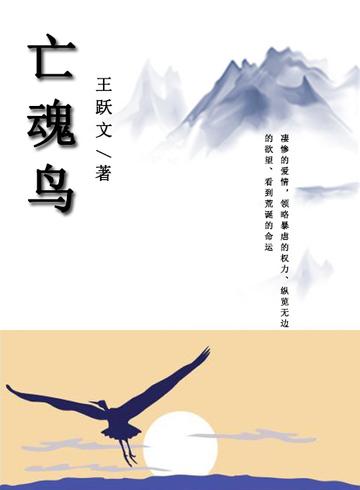 亡魂鸟小说