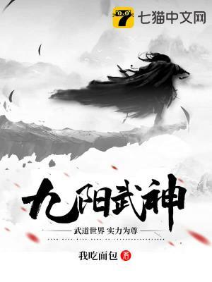九阳武神小说
