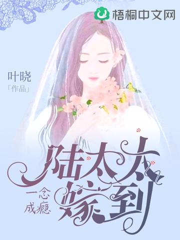 一念成瘾,陆太太嫁到小说